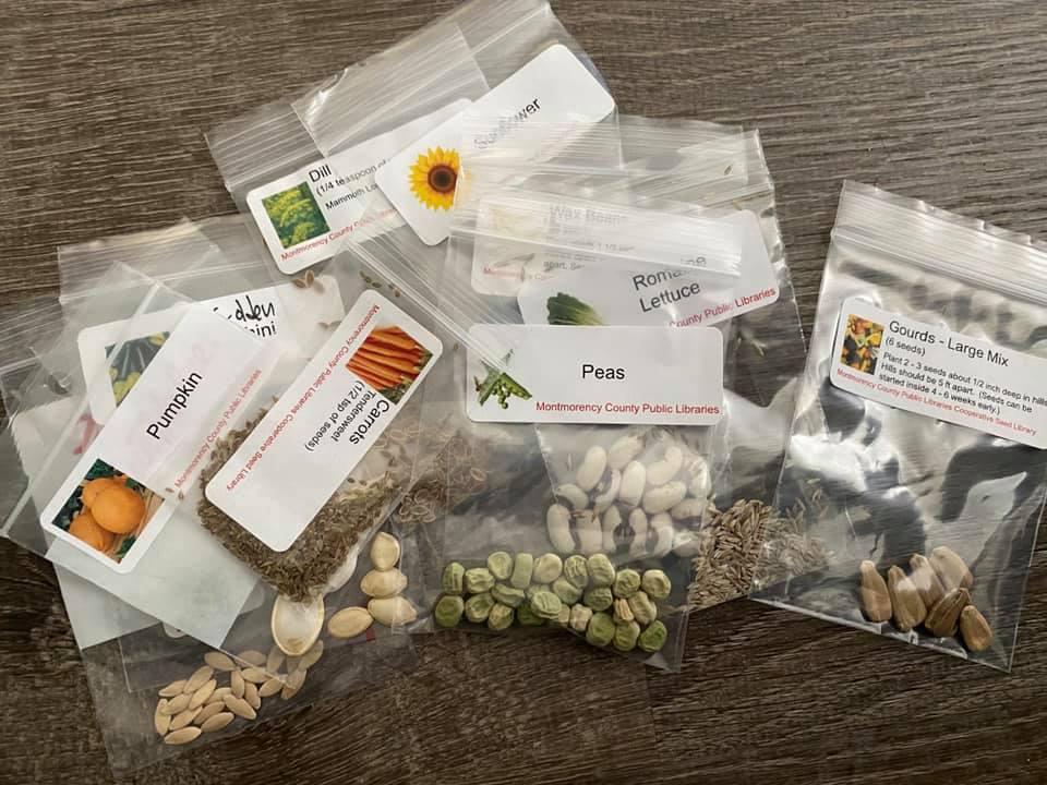 lib seed kit2.jpg