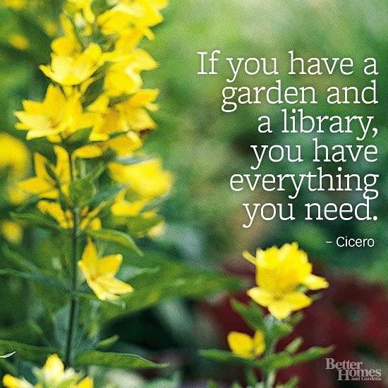 library garden quote.jpg