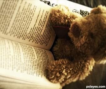 teddyandbook.jpeg