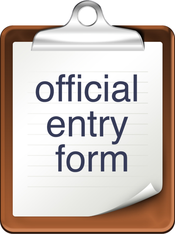 V&V entry form 2017.png